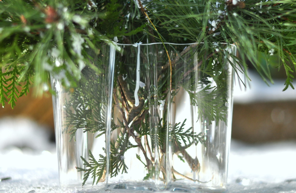 aalto vase, christmas branches,