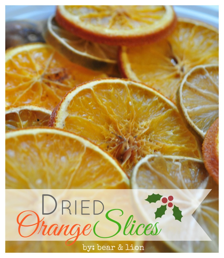 dried orange slices 2
